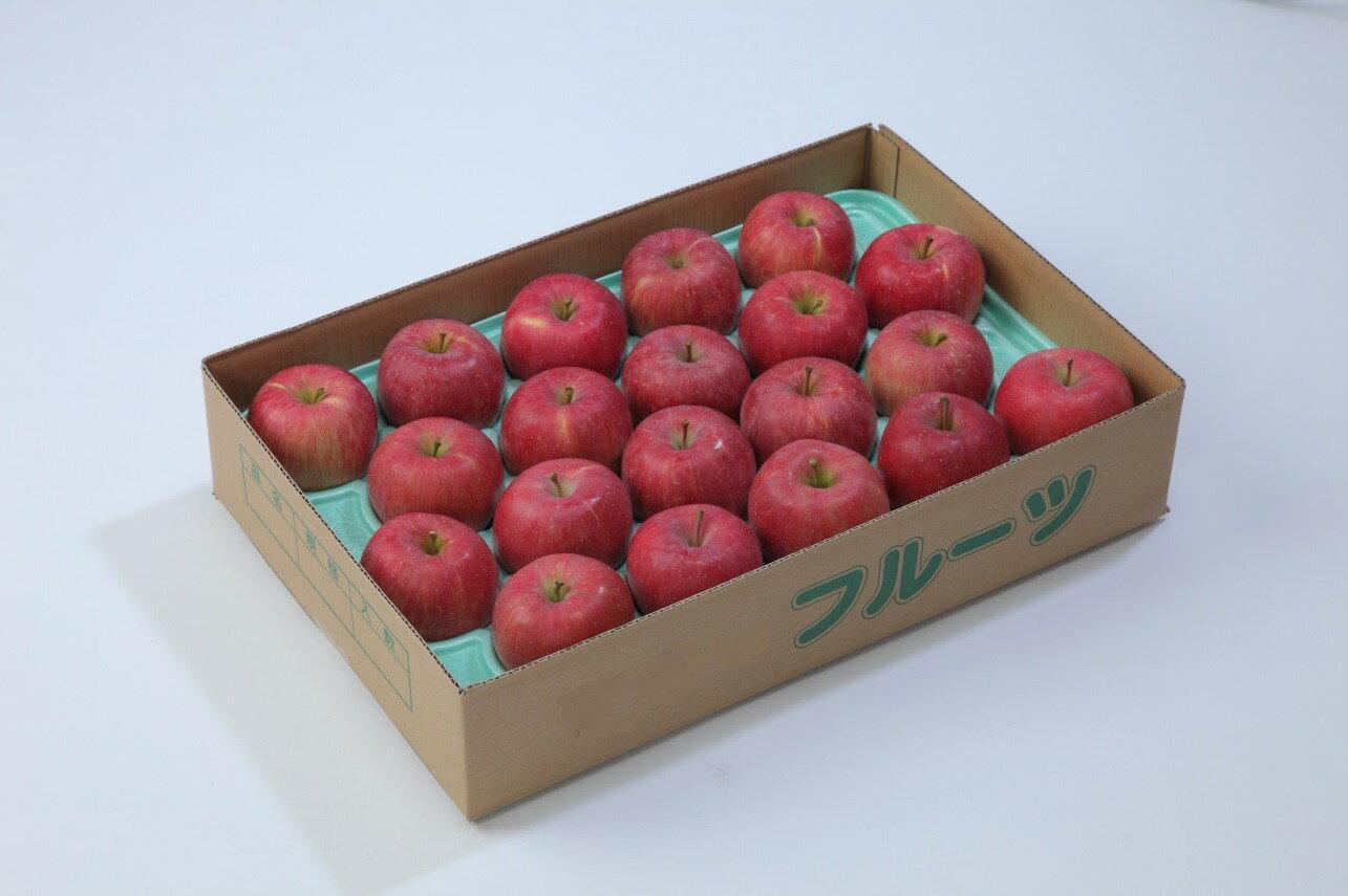 【ふるさと納税】 FY18-771 【甘み・酸味・歯ごたえの三拍子が揃った】山形産りんご(サンふじ)7kg(16~26玉)