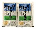 【ふるさと納税】A01-031 はえぬき玄米(10kg)