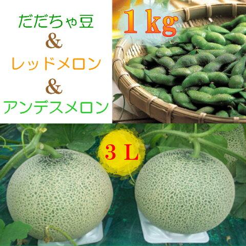 【ふるさと納税】A51-403 庄内砂丘メロン(青・赤)と鶴岡特産だだちゃ豆のセット