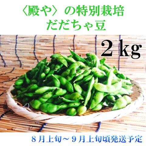 【ふるさと納税】A01-667 殿やの特別栽培 だだちゃ豆2kg