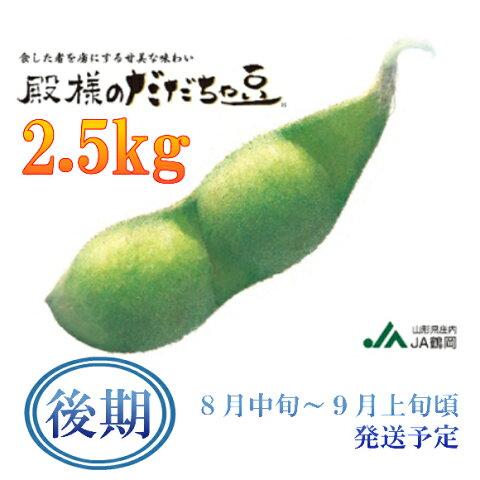 【ふるさと納税】A51-422 殿様のだだちゃ豆2.5kg(後期)