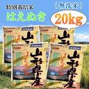 【ふるさと納税】C01-002 特別栽培米はえぬき無洗米20