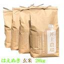 【ふるさと納税】C01-001 井上農場の特別栽培米はえぬき