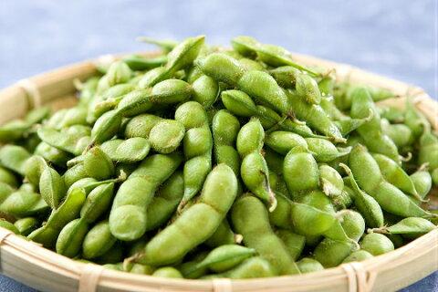 【ふるさと納税】A51-434 だだちゃ豆(冷凍 2.5kg)