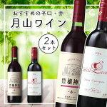 【ふるさと納税】月山ワインおすすめ赤ワイン2本セット(ヤマ・ソービニオン)【辛口】