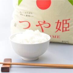 庄内産 特別栽培米つや姫 5kg×3袋 計15kg 令和2年産米
