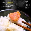 【ふるさと納税】≪定期便≫無洗米 はえぬき 計30kg 10