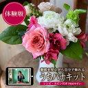 【ふるさと納税】自分でお花を飾ろう「うちハナキット」体験 ※離島発送不可 花 おうち時間