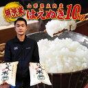 【ふるさと納税】 新米 無洗米 はえぬき 10kg(5kg×