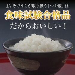 【ふるさと納税】 特別栽培米 つや姫 15kg (5kg×3袋) 令和3年産米 山形県産 ご希望の時期頃にお届け 米 庄内米 画像1