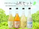 【ふるさと納税】酒田の酒類卸業者が厳選!果樹王国やまがたが贈...