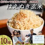 【ふるさと納税】【時期選べる】令和3年産玄米10kg新米はえぬき山形県産米食味ランキング高評価2021年産雪解け水が育む美味しいお米