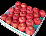 【ふるさと納税】雪室りんご5kgサイズおまかせ
