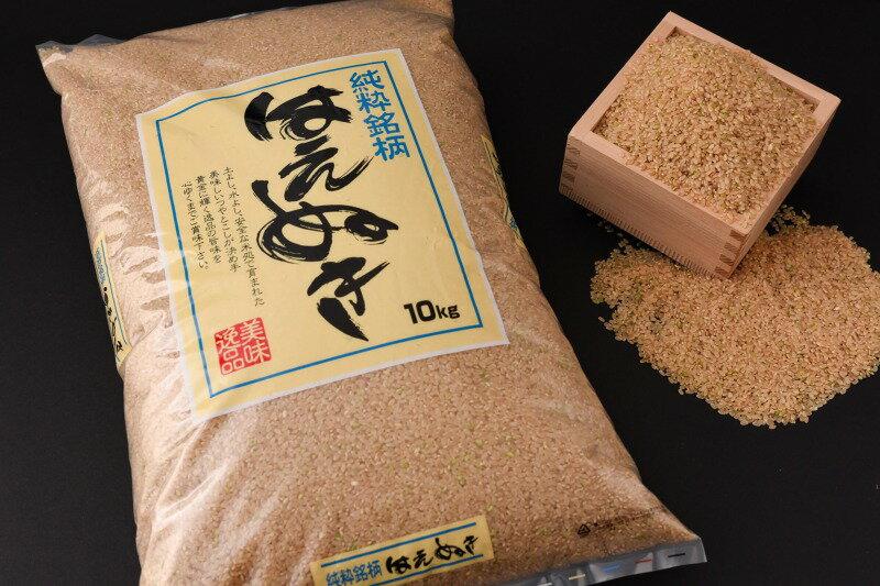 2019年産 10kg 山形県産 はえぬき 玄米