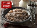 【ふるさと納税】卯月製麺の「山形のさがえそば」32人前