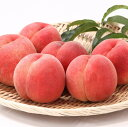 【ふるさと納税】厳選 白桃 たっぷり5kg 硬めの品種おまか...