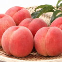 【ふるさと納税】厳選 白桃 たっぷり5kg <やわらか> 品...