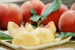 【ふるさと納税】山形の白桃 <品種おまかせ> 3kg(8〜14玉) 秀品 画像1