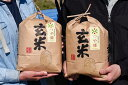 【ふるさと納税】山形県産 つや姫 玄米 8kg(4kg×2袋...