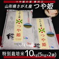【ふるさと納税】つや姫 10kg ≪ 特別栽培米だから安心安全 ≫ 2020年産