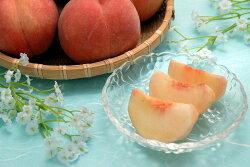 【ふるさと納税】山形の白桃 <硬い桃> 3kg 品種おまかせ (8〜14玉) 秀品 画像1