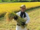 【ふるさと納税】 エコファーマー 認定農家 こだわりの「はえ...