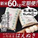 【ふるさと納税】計60kg!新米定期便(お得な半年コース)平...