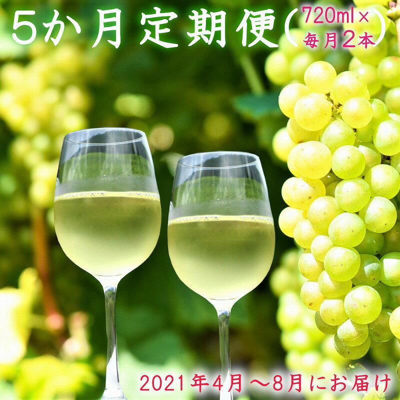 寒河江ワイン シャルドネ 白/辛口 5か月定期便 720ml×2本×5か月(4月~8月)