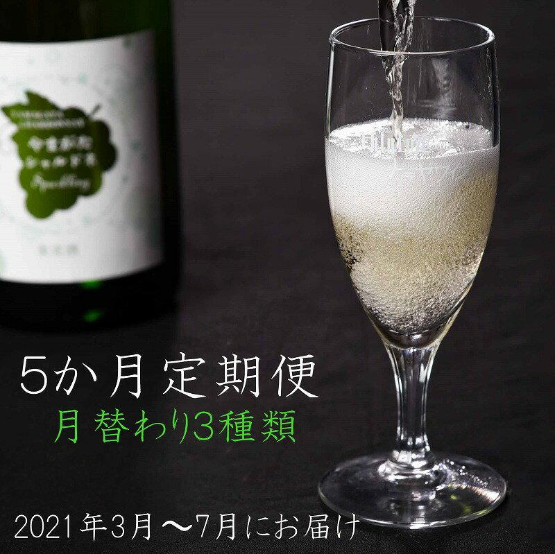 ワイン 月替わり 3種 720ml×2本×5か月(3月~7月)