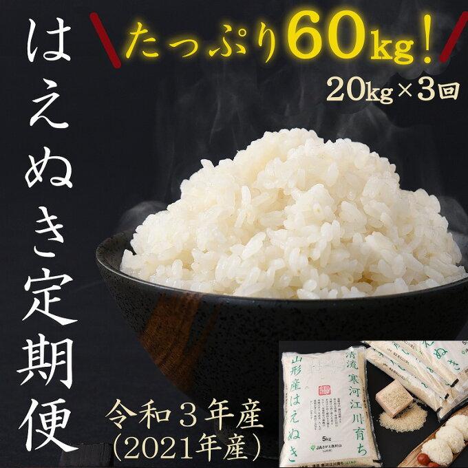 【ふるさと納税】計 60kg 新米 定期便 3回 2021年産 はえぬき 20kg(...