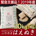 【ふるさと納税】【緊急支援品】2019年産 たっぷり20kg...