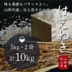 【ふるさと納税】H30年産米「はえぬき」10kg