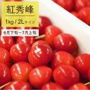 【ふるさと納税】さくらんぼ 2019年産(紅秀峰)500g×...