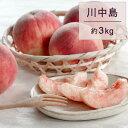 【ふるさと納税】もも(川中島)3kg