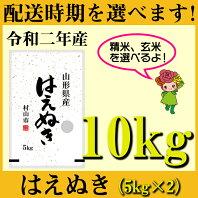 【ふるさと納税】 米 10kg 5kg×2 はえぬき 新米 精米 玄米 令和2年産 2020年産 山形県村山市産 送料無料