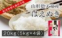 【ふるさと納税】はえぬき20kg(5kg×4袋・令和2年産)
