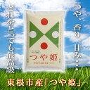 【ふるさと納税】A-196 29年産(30年4月送付分)東根産米『つや姫精米』5kg×5