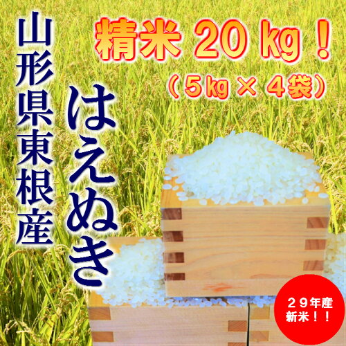A-142 29年産_東根産米「はえぬき精米」5kg×4