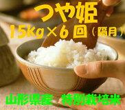 【ふるさと納税】D-96☆特別栽培米「つや姫」15kg×6回(隔月)定期便