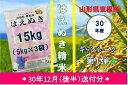 【ふるさと納税】A-450 30年産はえぬき精米15kg(3...