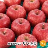 【ふるさと納税】K-12522020年産りんご「サンふじ」5kg東根市内観光果樹園提供