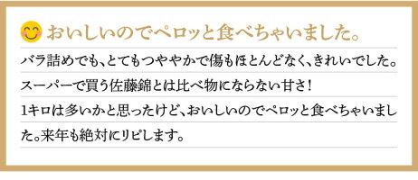【ふるさと納税】P-1216GI「東根さくらんぼ」佐藤錦1kgバラ詰めJA産直提供(2020年6月中旬〜下旬送付)