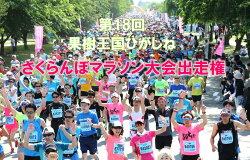 【ふるさと納税】A-301第17回果樹王国ひがしねさくらんぼマラソン大会出走権