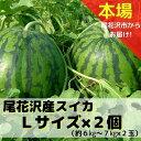 【ふるさと納税】尾花沢産スイカLサイズ(約6~7kg)×2玉
