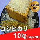 令和3年産☆尾花沢産コシヒカリ精米10kg(5kg×2袋)
