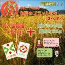 【ふるさと納税】山形ブランド米2種食べ比べセット・つや姫精米...