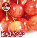 【ふるさと納税】山形県産 紅さやか 200g×2 秀M〜L