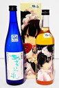 【ふるさと納税】 あさぎいろの伝説、夜魔咲 梅酒(720ml×2本)