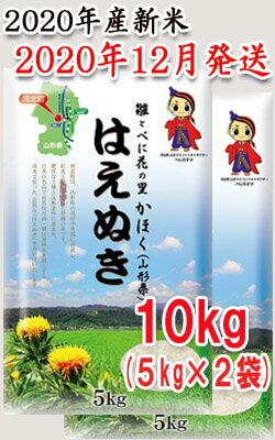 山形県河北町産米はえぬき10kg(5kg×2袋)