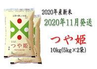 【2020年11月発送分】山形県河北町産米つや姫10kg(5kg×2袋)【JAさがえ西村山】